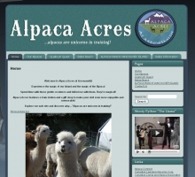 Alpaca Acres at Arrowsmith